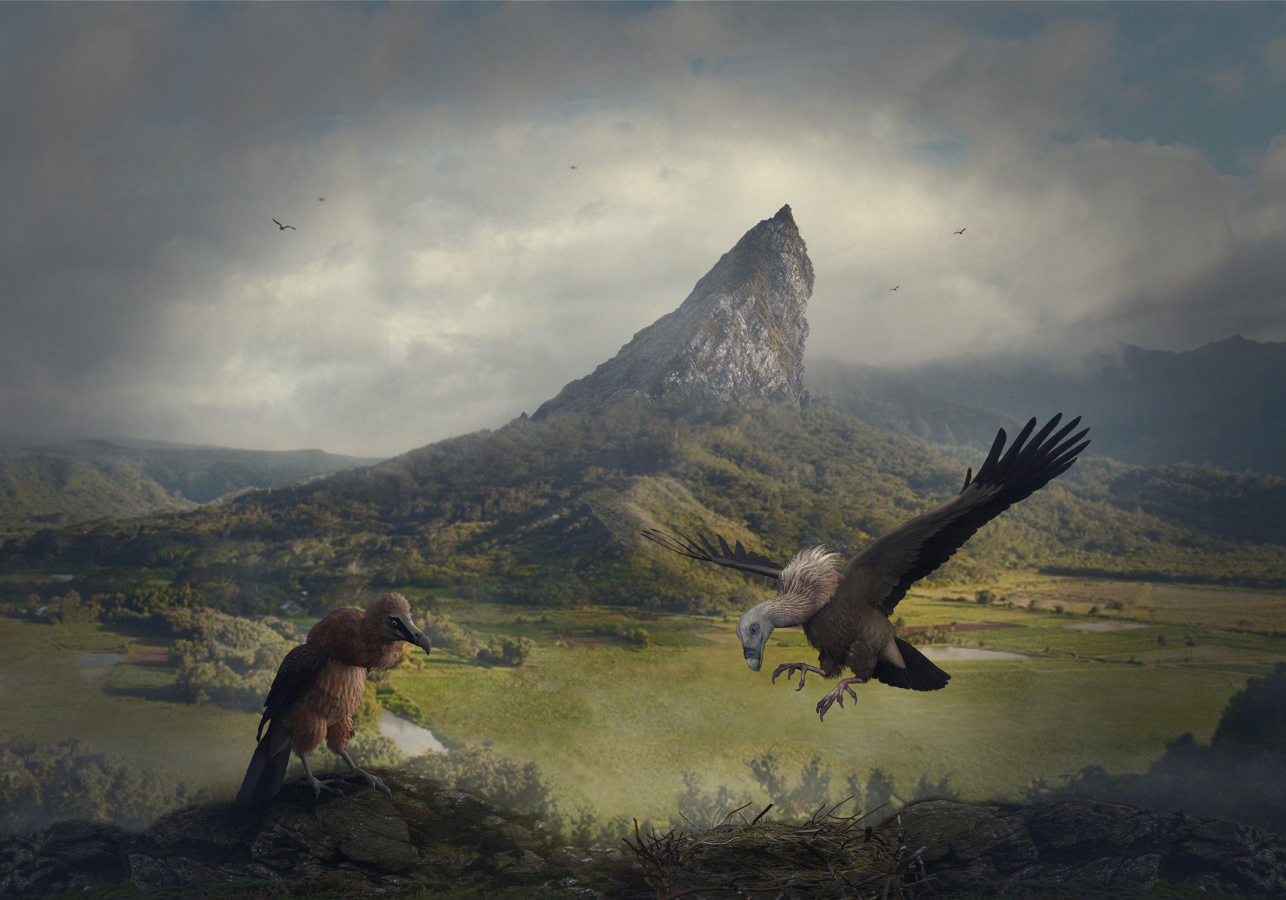 облака, скалы, грифы, Sergii Vidov
