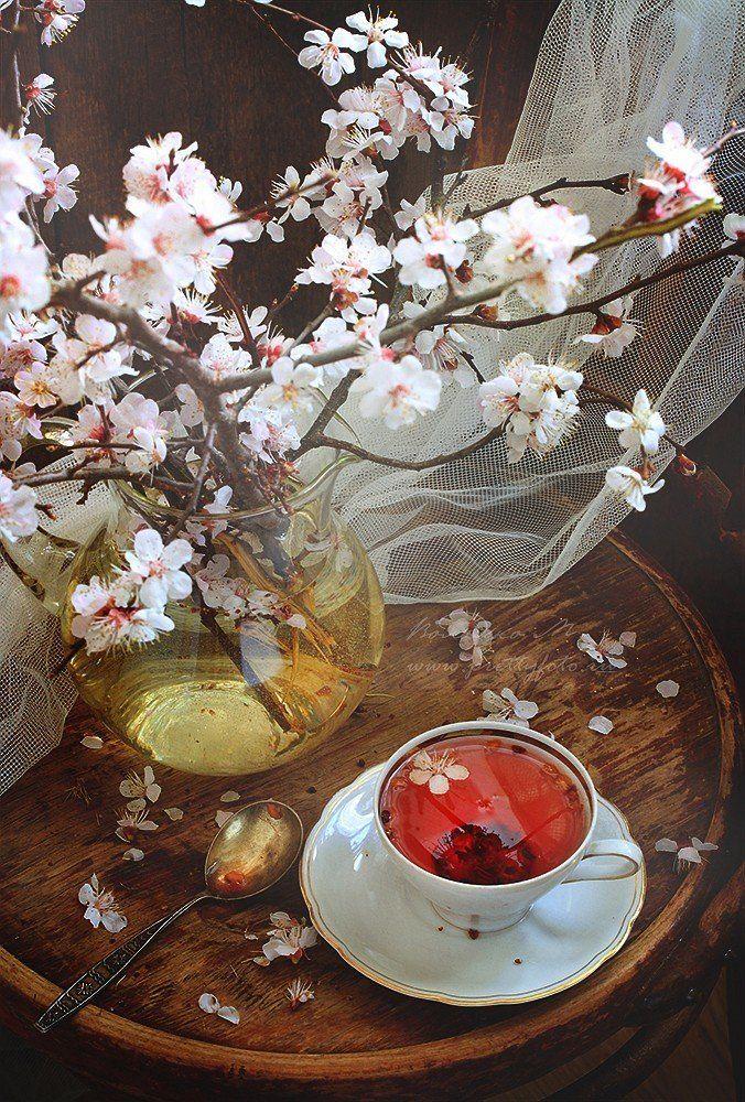 чай, Володько Марина