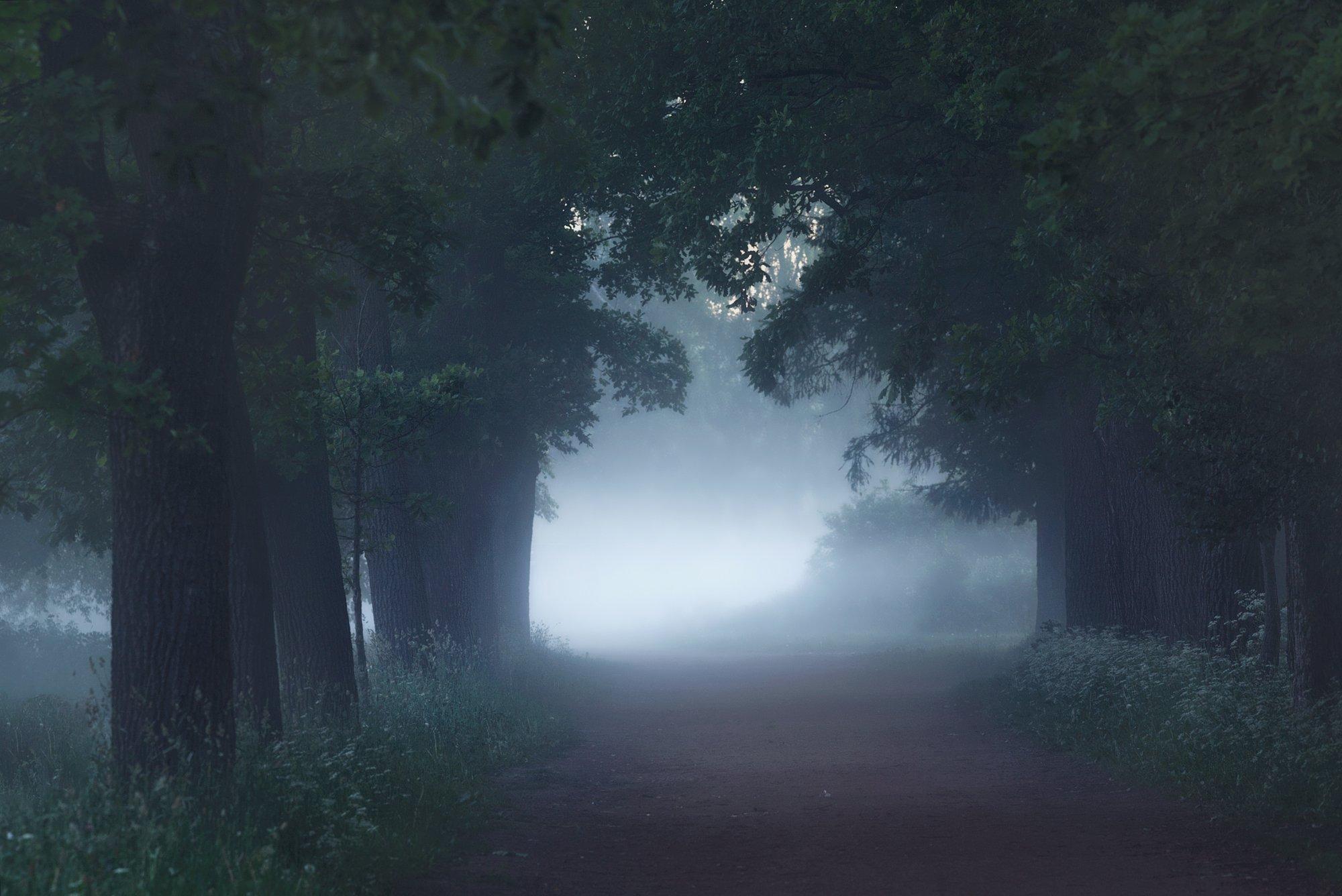природа, пейзаж, царское, царкоесело, пушкин, SHE (Aiya) Таня