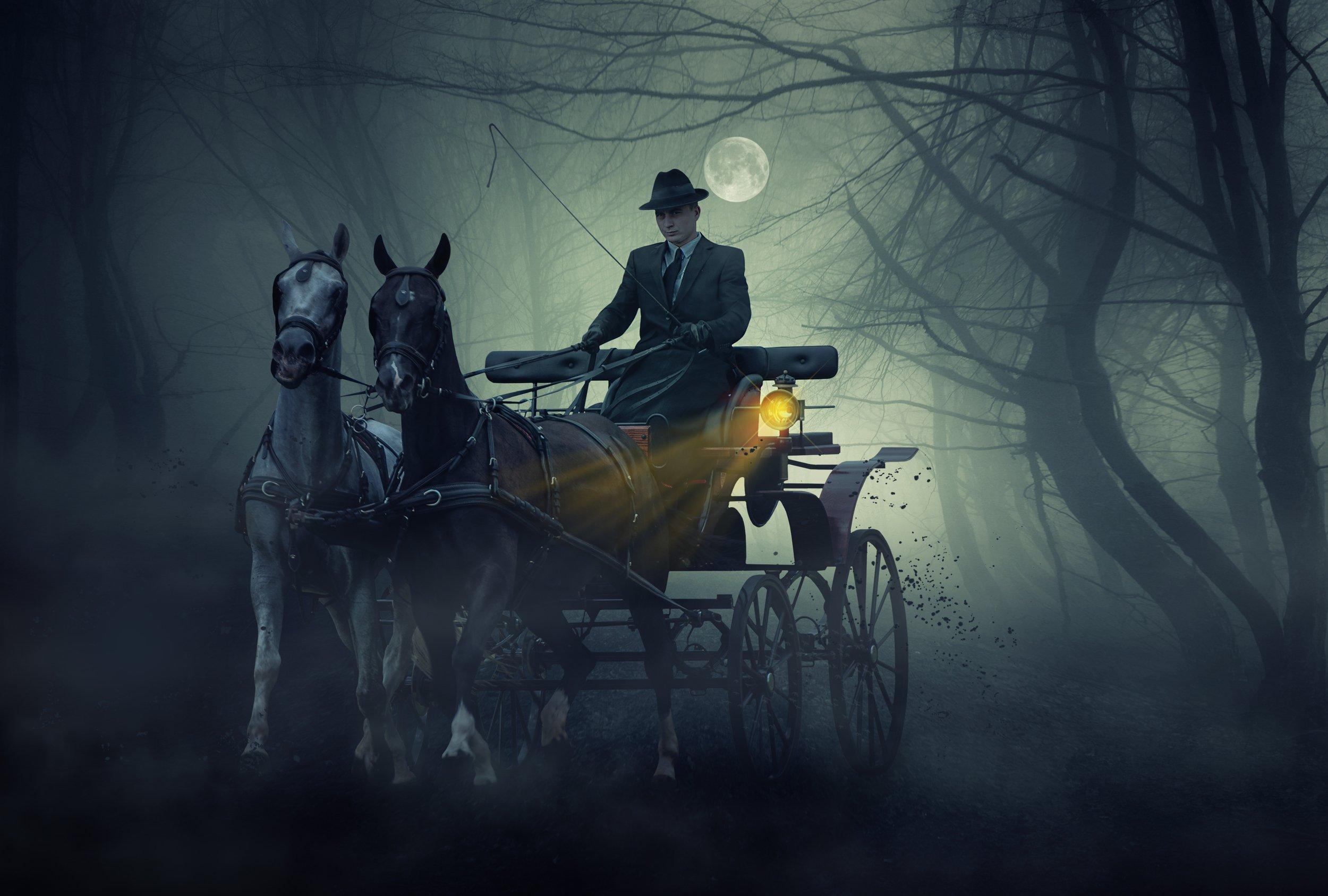 лошади, лес, мужчина, Sergii Vidov