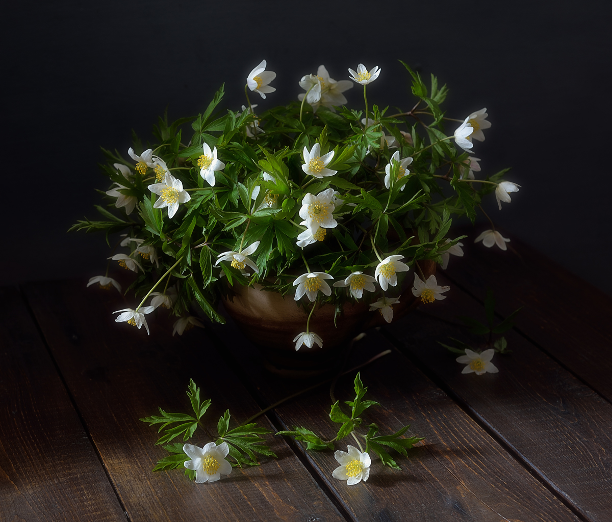 натюрморт,цветы,весна,анемоны,ветреницы, Наталия К