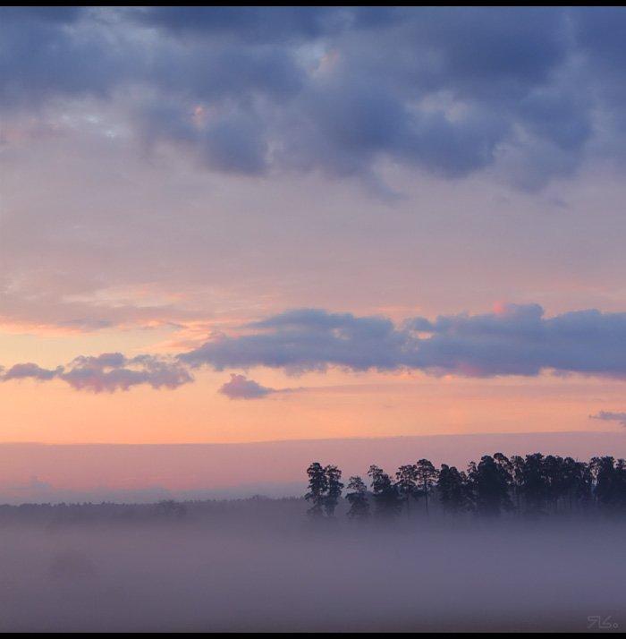 утро, туман, прохлада, Янситов Константин (старший)