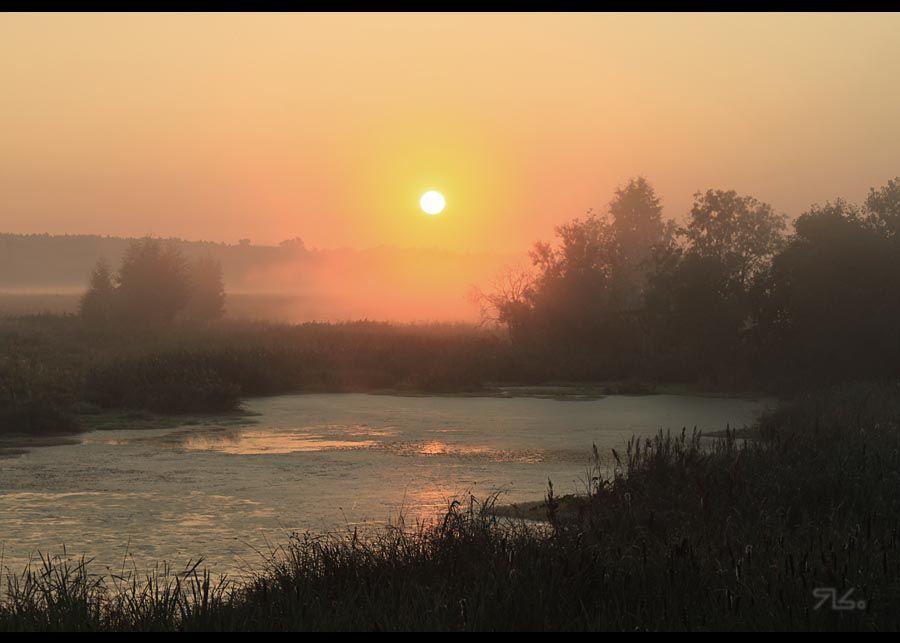 утро, туманное, Янситов Константин (старший)