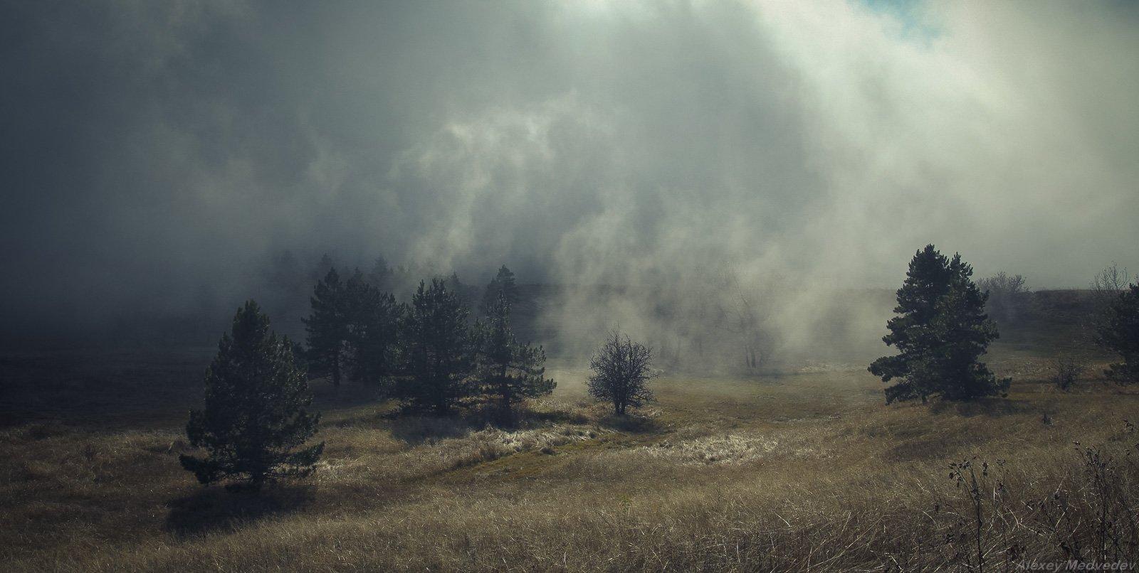 крым, горы, туман, мистика, облако, яйла, ай-петри, затерянный мир, Алексей Медведев