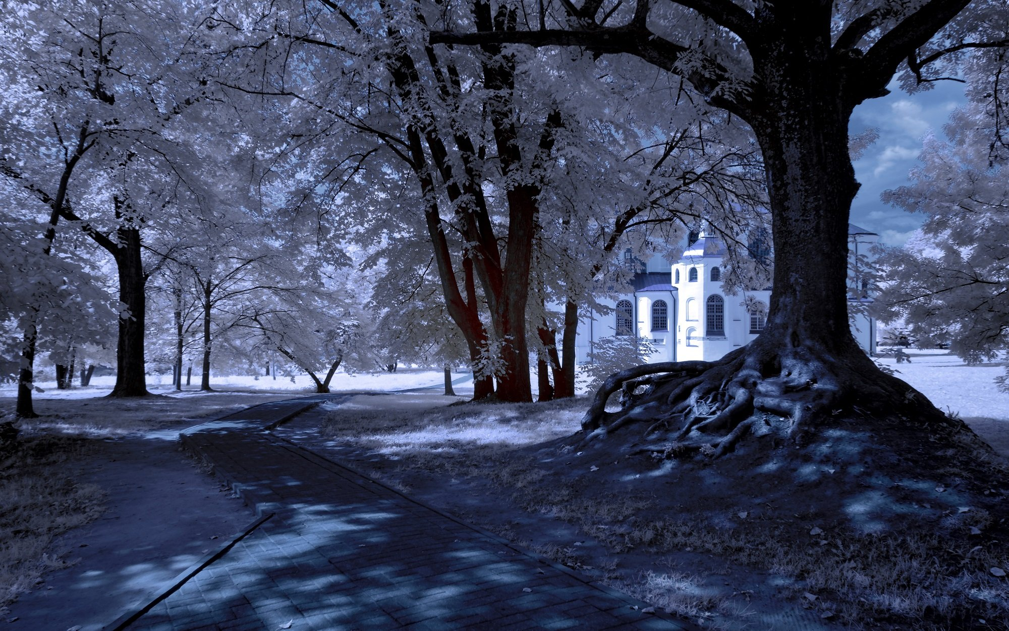 infrared,ик-фото,инфракрасное фото,инфракрасная фотография,пейзаж,беларусь,лето, Sixten ( Сергей )