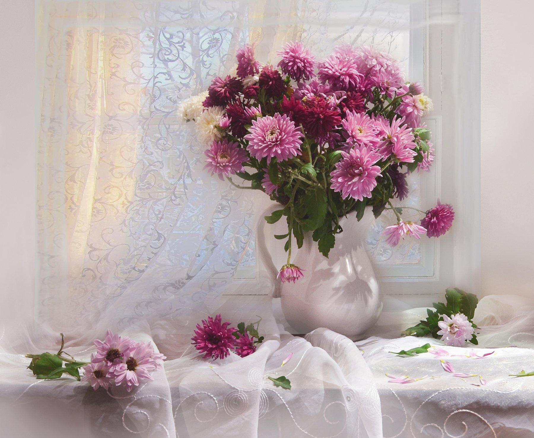 still life,натюрморт,фото натюрморт,осень, ноябрь, хризантемы, цветы,предзимье, Колова Валентина