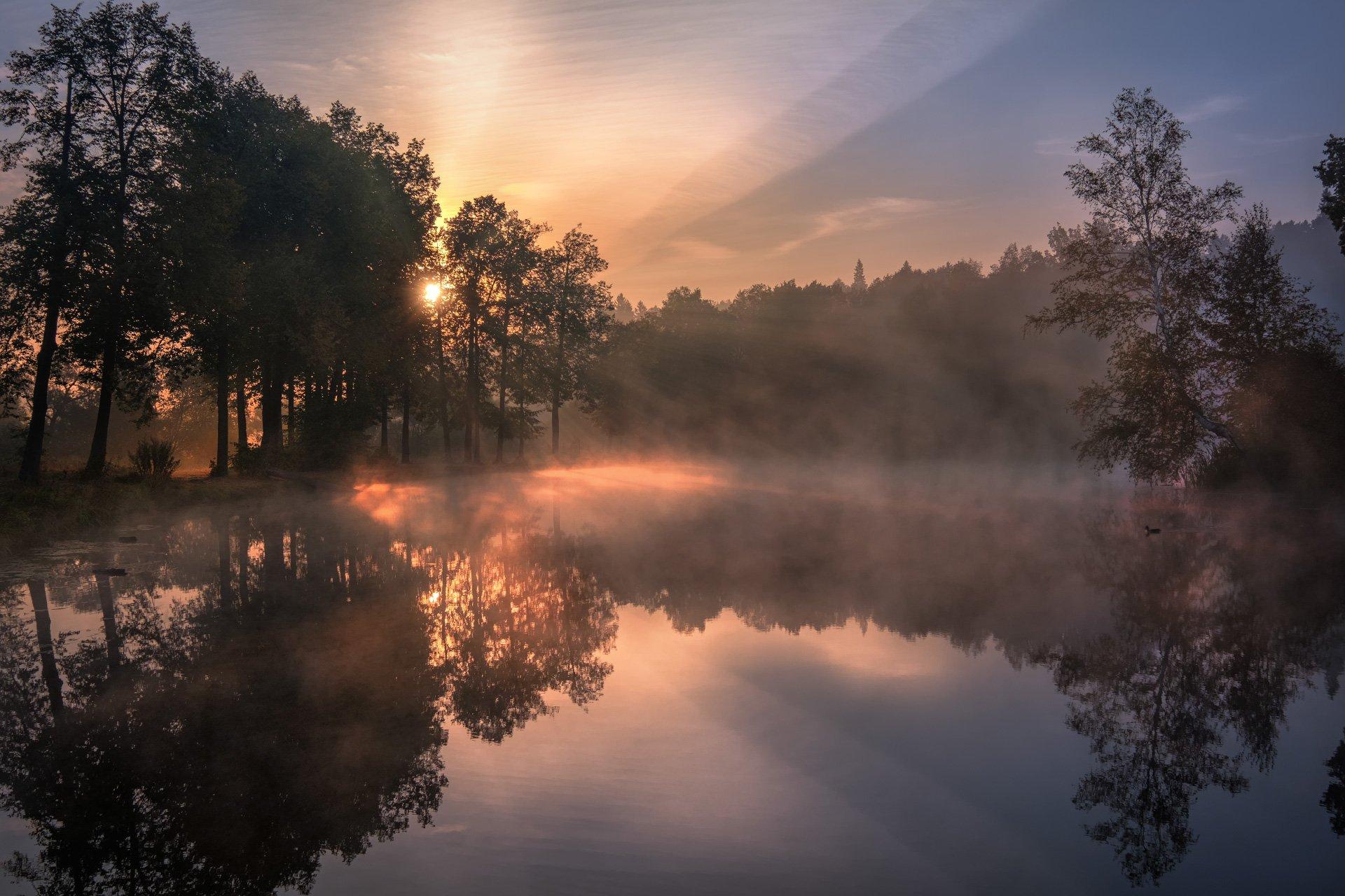 середниково, пруд, барский, туман, утро, рассвет, осень, лес, цвета, солнце, бабье лето, свет, Андрей Чиж