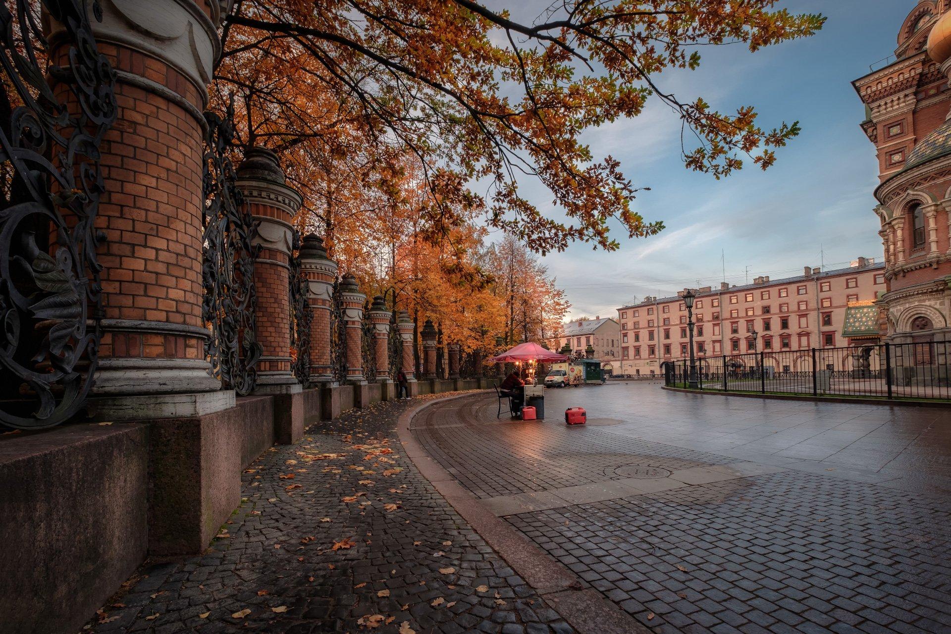 петербург, осень, спас на крови, ограда, листва, утро, пасмурно, Андрей Чиж