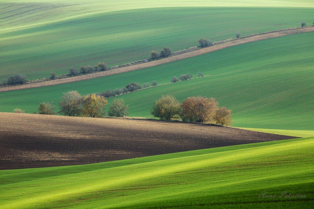 моравия, пейзаж, Анна Пакутина