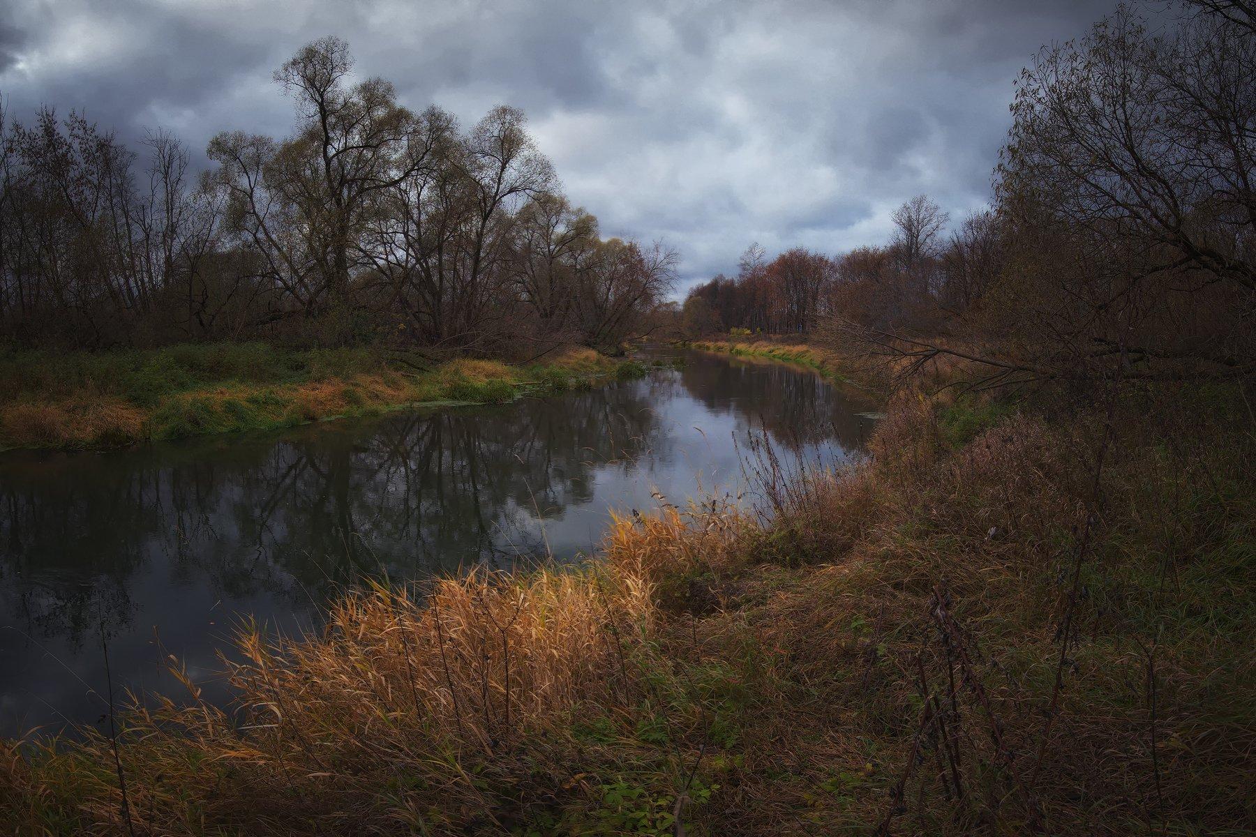 лес, природа, пейзаж, осень, река, вода, ручей, подмосковье, Алексей Ник