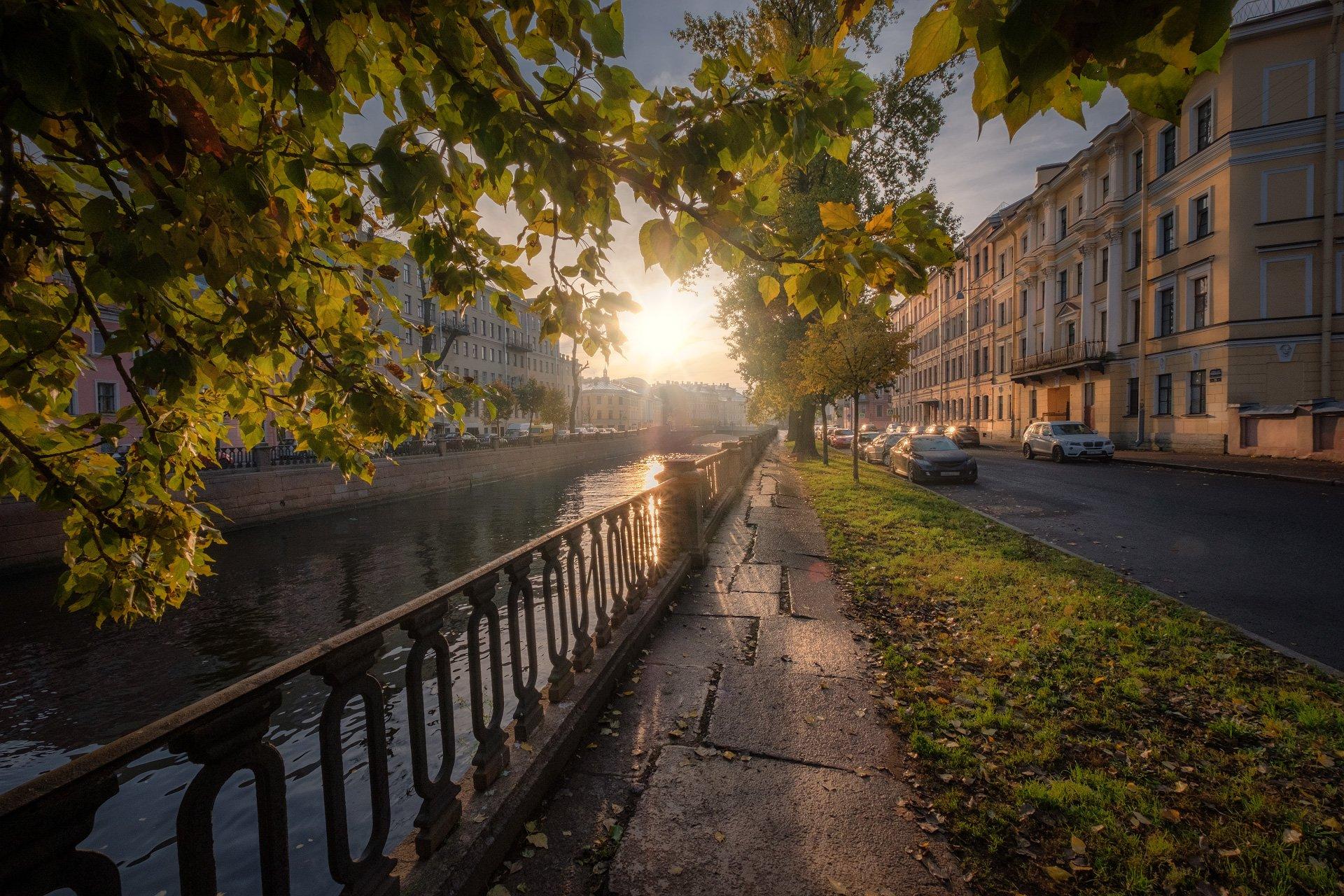 петербург, канал, грибоедова, солнце, осень, листва, утро, Андрей Чиж
