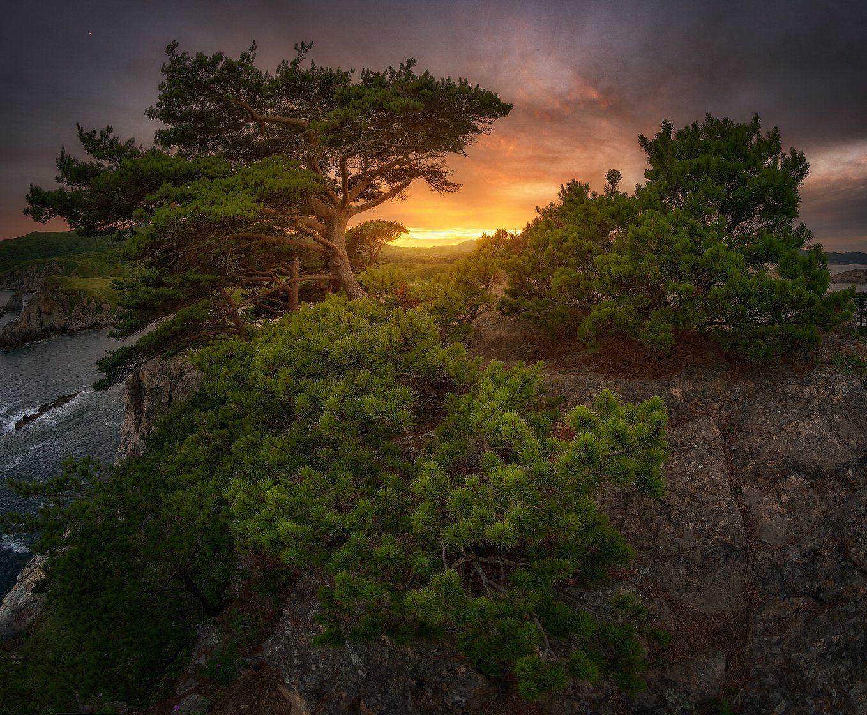 приморский край море солнце рассвет владивосток заповедник скалы, Сорокин Алексей