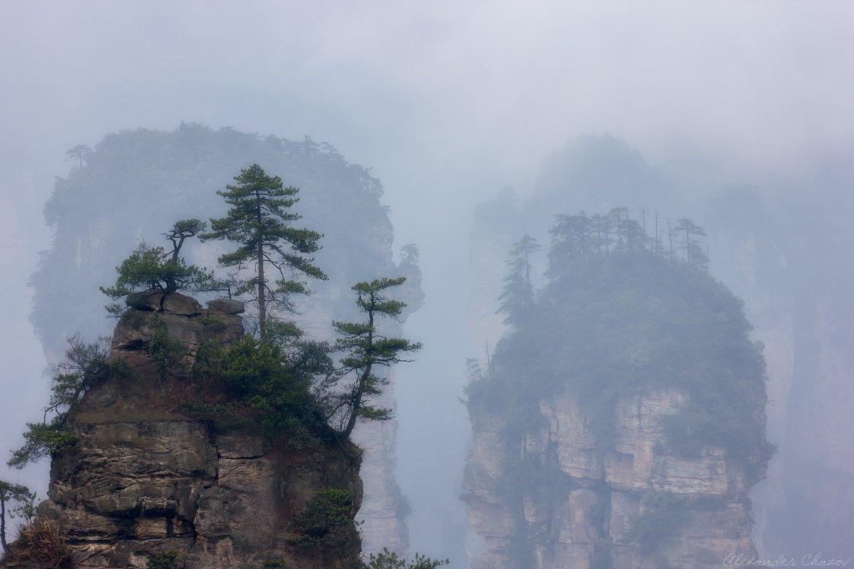 аватар, пандора, туман, пейзаж, скала, скалы, природа, Александр Чазов