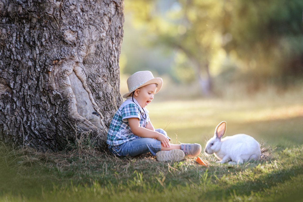 кролик, ребенок, лес, Заручевская Надежда