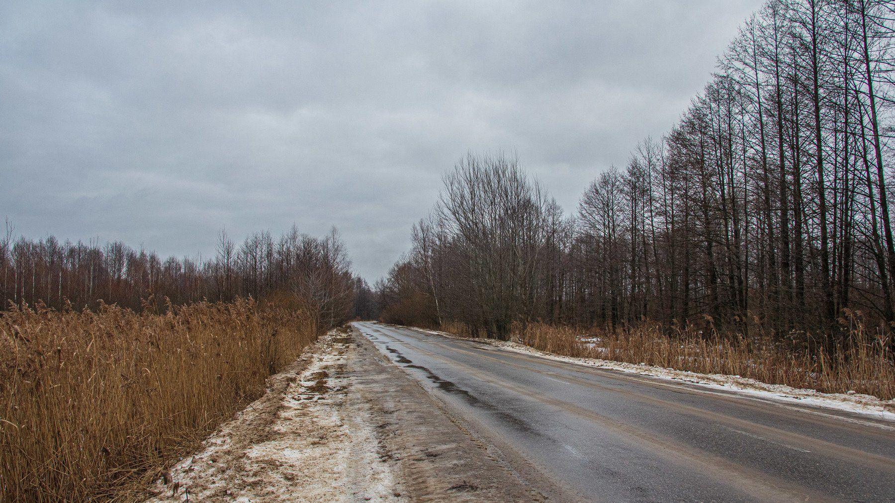 пейзаж, кулебаки, landscape, winter, зима, дорога, road, trees, grass, деревья, Васильев Владимир