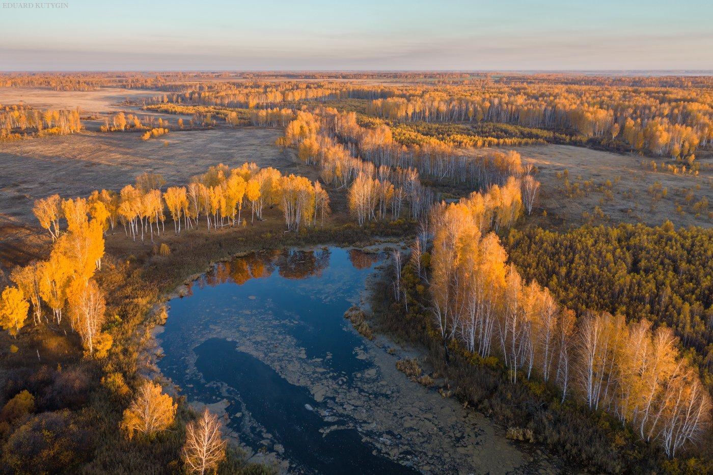 Курганская Шадринск, Кутыгин Эдуард
