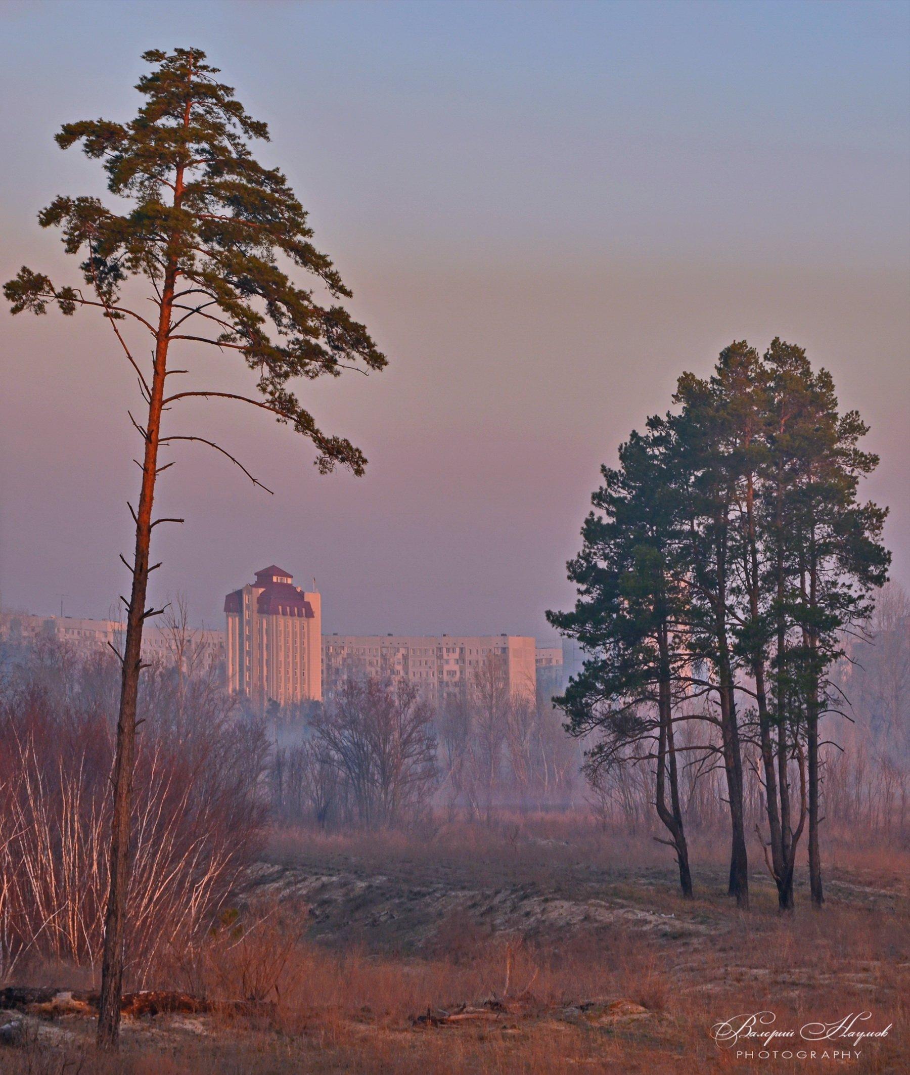 утро, рассвет, туман, город, Валерий Наумов