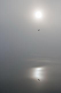 Озеро Байкал, осенние туманы - видимость порядка 100 метров. 14 часов лежали в дрейфе (сломался двигатель), рядом ходили катера, но не мы их, не они нас не видели, только слышали