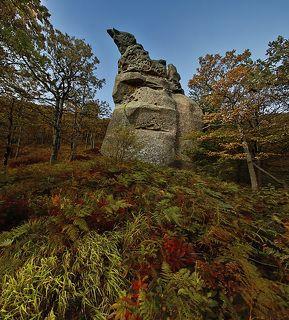На южных склонах массива горы Индюк, который расположен в Туапсинском районе, Краснодарского края, \