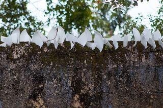 Забор на фабрике росписи фарфора