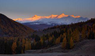 Первые лучи на вершинах горного массива Текелю (Катунский хребет)
