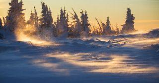 Догоняшки снежинок по снежному насту..! :)))
