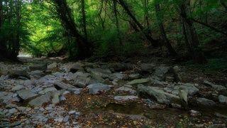 прогулка по реке