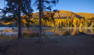 Из-за деревьев картина раннего утра на реке смотрелась особенно красиво