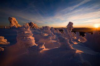 01 Снежные скульптуры фактурны и выразительны сами по себе, но но закате от них сложно оторвать глаза... 2013 год