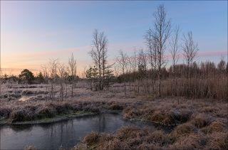 Начало восхода над торфяными болотами