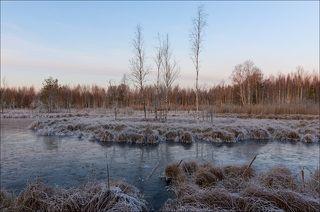 Тусклый восход над заморожеными торфяниками