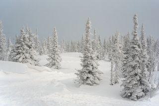01 В начале декабря 2020 года на гору Зеленую приехали мы, а через день – затяжные метели и снегопады)
