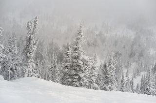 02 С точки зрения фотографии мне такая погода нравится гораздо больше, чем теплая и солнечная, ...