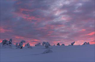 Малиновый восход