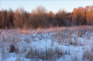 Утренний свет чуть подмороженного утра