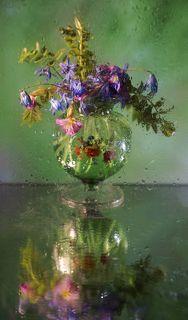 Весна цвета акварели