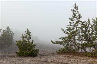 Туманные просторы карьеров