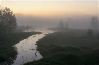 Туманный рассвет в начале мая