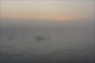 Майское половодье в тумане рассвета