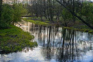 02 Но в начале мая первая зелень по берегам такая яркая, ...