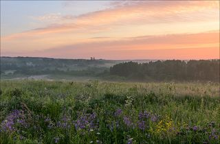Цветущие луга на восходе