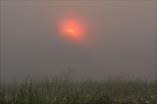 Восход в плотном тумане