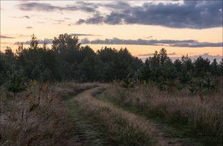 Поворот дороги, перед восходом.