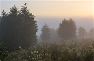 В долине реки плотный туман