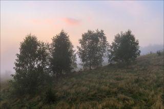 Там за туманом солнце встаёт ...