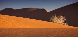 Намиб - самая древня пустыня в мире