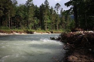Быстрая река Кенигсзеер Ахе впадает в озеро. Вода чистейшая и очень холодная.