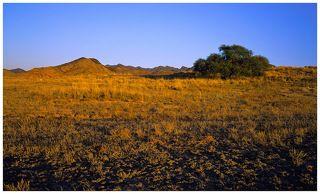 №2. Закат в казахстанских прериях.