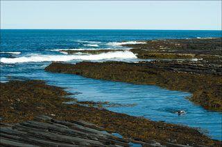 Баренцево море. Дальше - только Северный Ледовитый океан. Температура воды - 11 градусов.