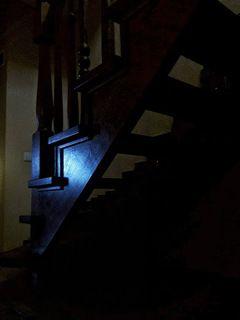 Ах, как я хороша! - подумала Лестница, проснувшись рано утром.   Вы все по мне бегаете туда-сюда, потому что я доме важная персона, на мне большая ответственность по Вашему подъему и спуску...